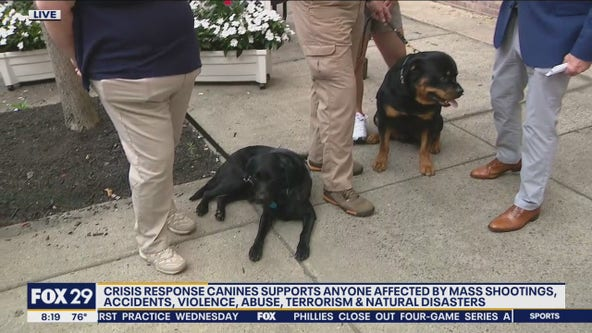 Crisis Response Canines return home after serving during aftermath of Surfside collapse