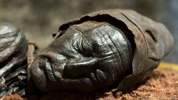 Iron Age-era mummy preserved in bog still has undigested last meal