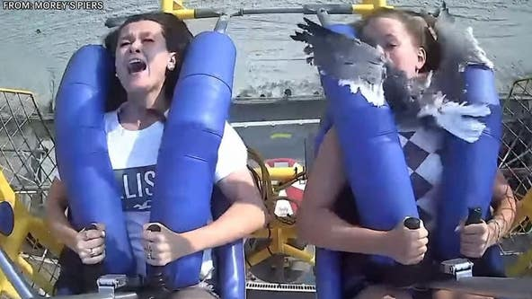 Teen smacked in face by seagull on amusement park ride in Wildwood