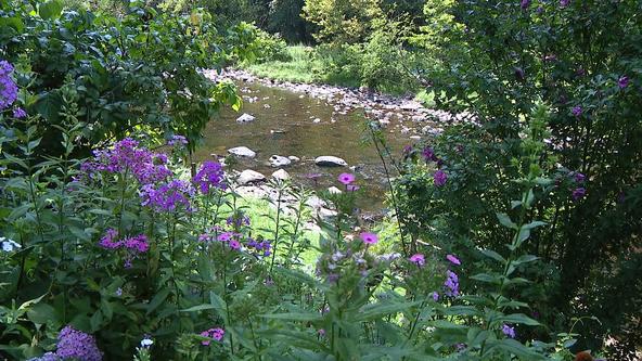 Regional gardening: The Gardens at Mill Fleurs