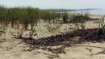 'Things are dire': $16B bay flood plan for worst NJ storms
