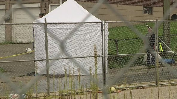 Newborn baby found dead in Upper Darby, police say