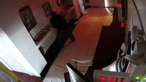 Man steals $800 from church collection box
