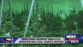 Marijuana growers vindication after operation proven legal; charges dropped