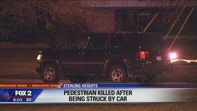Police investigating person killed, hit by car in Sterling Heights