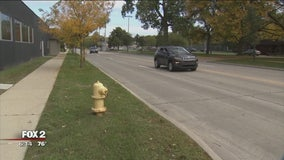 City officials putting in efforts to revamp 11 Mile stretch in Oakland Co