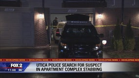 Utica garage stabbing happened during botched break-in: police
