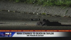 22-year-old dies after stabbing in street in Taylor