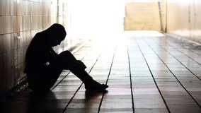 Michigan organizations split $650,000 for suicide prevention