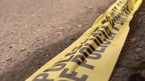 Mushroom hunter finds remains of missing Eastpointe man