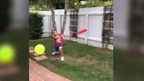 Jim Harbaugh gets drilled by son with Wiffle ball