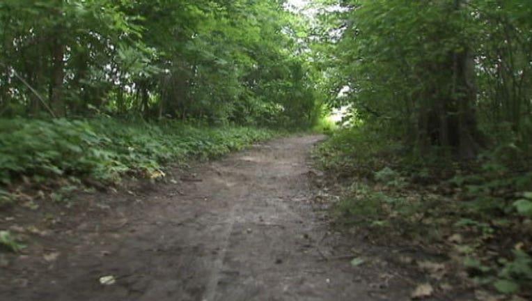 woods_hike_clean.jpg