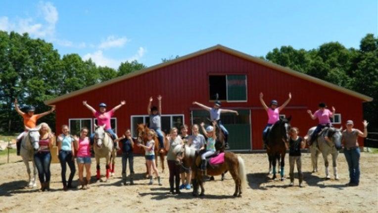 barn-horses2-bkgd_1491911724245.jpg