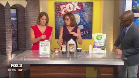 Jill of All Trades shows us how to kill ants without harsh chemicals