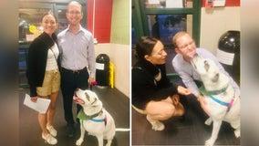'He never gave up': After 1,076 days at animal shelter, Bentley finds forever home