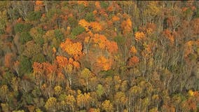 Fall festivals scheduled at dozens of Michigan state parks this season