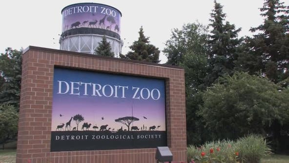 Detroit Zoo to reopen to members on June 8 as part of four-day soft opening