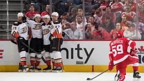 Red Wings unbeaten streak snapped, fall 3-1 to Ducks