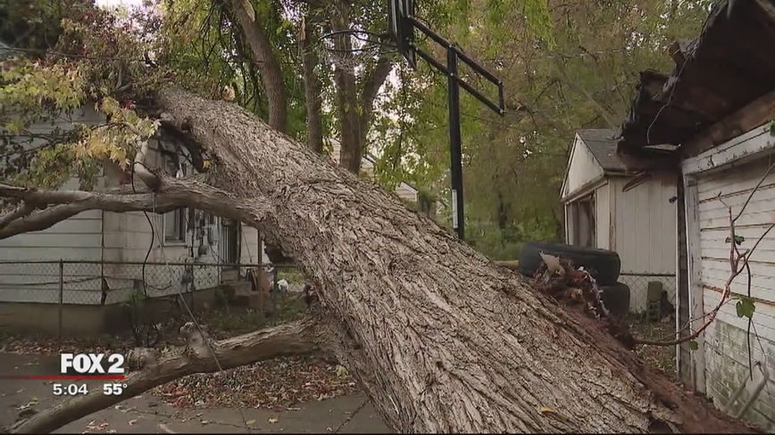 Tree falls through roof of Detroit home, leaving mom and 5 kids without a place to live