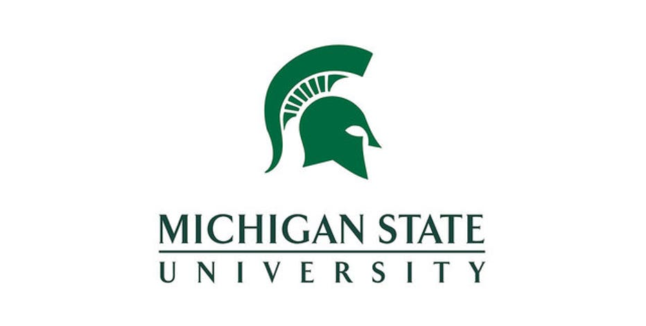Image result for msu
