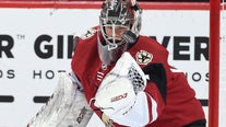 Red Wings acquire G Comrie from Coyotes