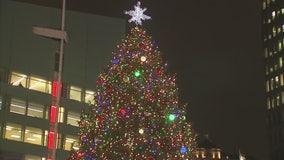 Campus Martius Detroit tree arrives Wednesday