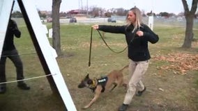 Widow of slain deputy finds new hope in police K9 assisted therapy