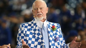 """Hockey Night in Canada"" commentator Don Cherry fired for anti-immigrant rant"