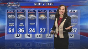 Temperatures plummet this week as cold front pushes into SE Michigan