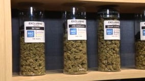Adult-use recreational pot sales totaled $221,000 on first day of businesses