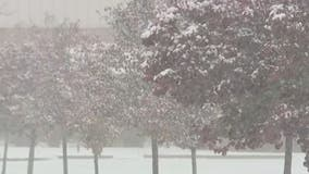 Detroit area schools close and cancel events during Saturday's snow