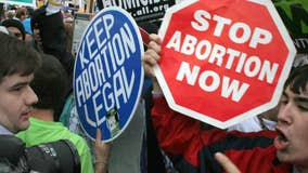 Michigan anti-abortion group submits petition to outlaw abortion procedure