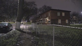Police investigate two more violent deaths in River Rouge