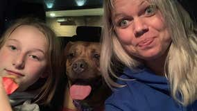 'New year, new life': After 963 days at PSPCA, Lucy finds forever home