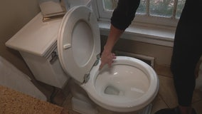 Replacing a toilet seat with Jill of All Trades