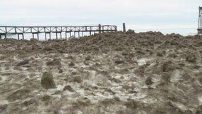 Piles of sludge have washed up on St. Clair Shores coastline