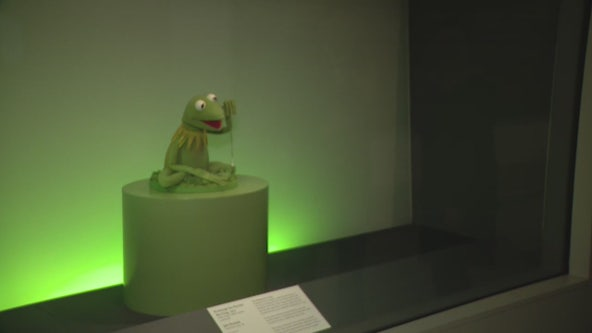A look at the new puppet display at the DIA