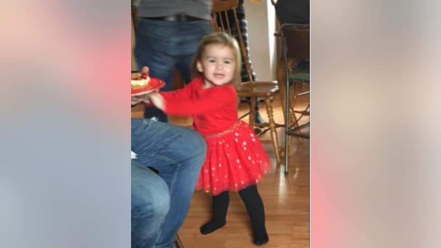 Endangered Missing Advisory issued for 3-year-old from Sanilac Co.
