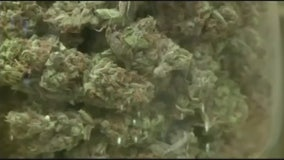 New Duggan proposal ensures half of Detroit pot shops owned by residents
