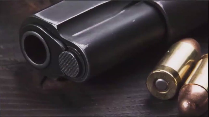 Law enforcement agencies team up to keep guns out of felons' hands