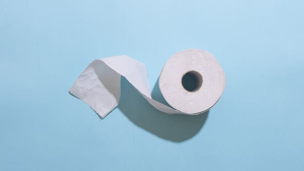 COVID-19 pandemic brings Mexican toilet paper to US as aftermath of panic buying