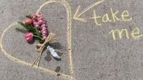 Royal Oak florist leaves surprise flowers with notes of hope
