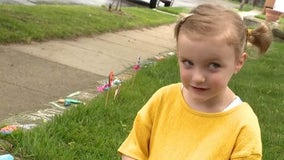 Royal Oak 4-year-old turns rocks into works of art to spread kindness