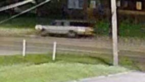 Westland police looking for driver who hit and killed woman on Van Born