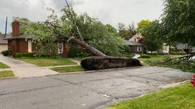Storms slice through east side leaving trail of damage in Detroit, Grosse Pointe