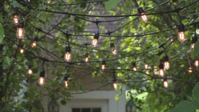 How to put landscape lighting in your trees