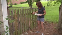 Jill of All Trades fixes up a warped fence gate