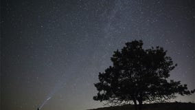 Perseids, the best meteor shower of the year, will peak next week — here's how to watch