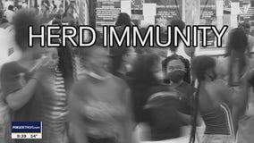 The Doctor Is In : Herd Immunity
