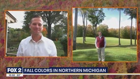 Fall Colors Popping Up North
